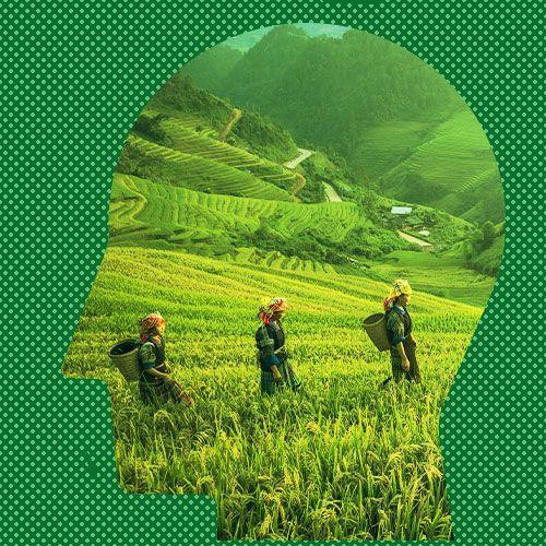 Agriculturist